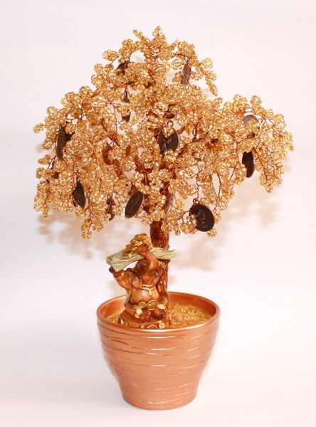 Денежное дерево- это прообраз