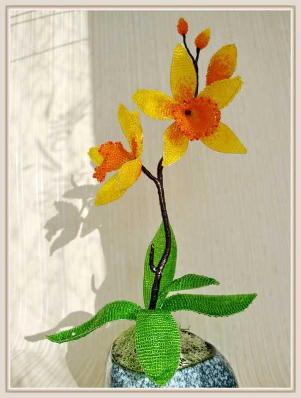 орхидея бисером