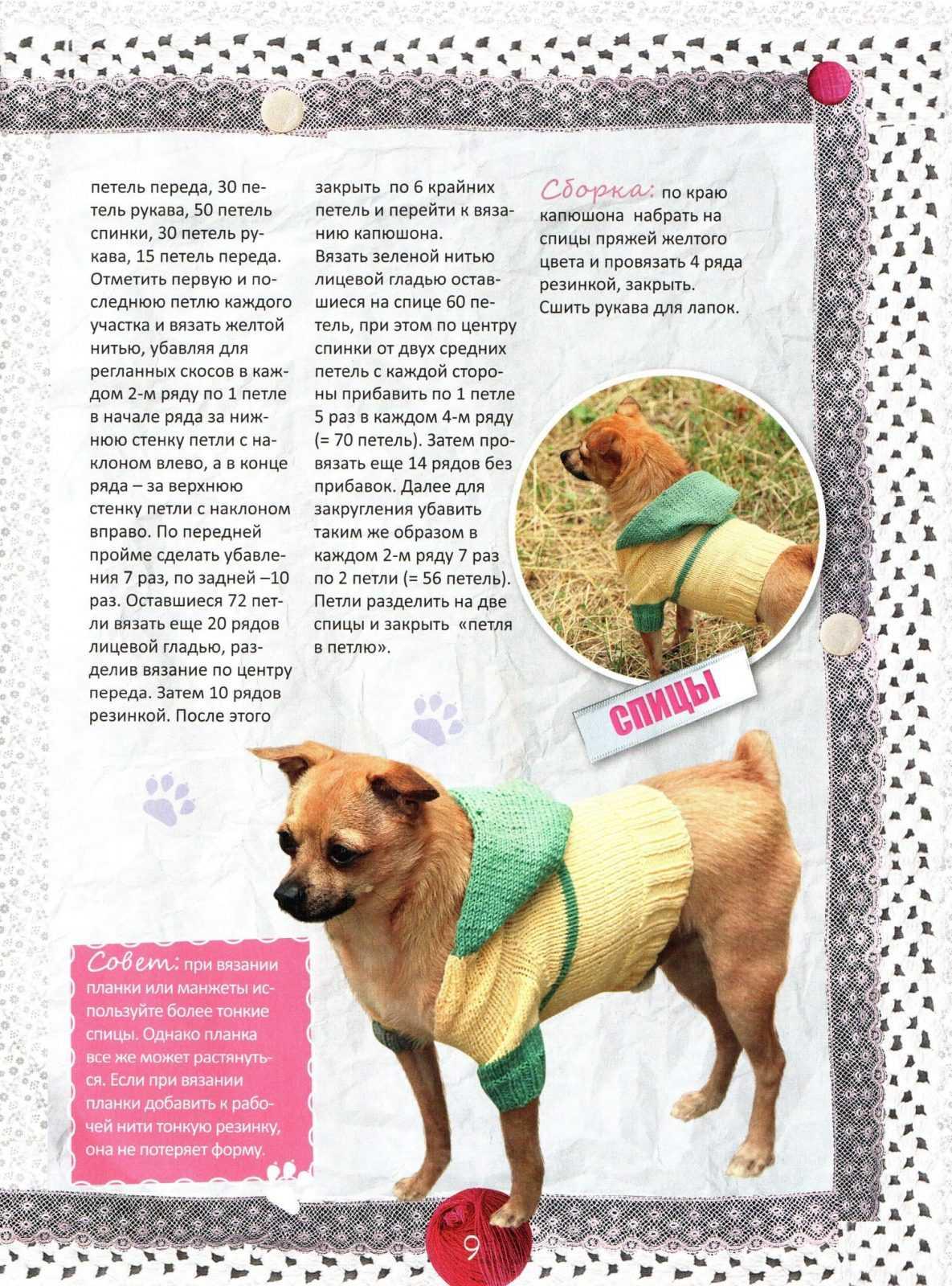 Вязание спицами для маленьких собак с описанием для начинающих 135