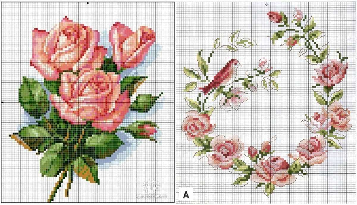 Роза фото и схема