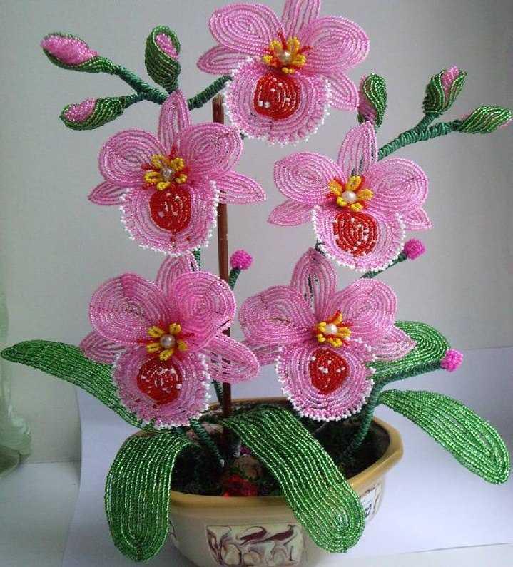 Орхидея из бисера фото и схемы для начинающих