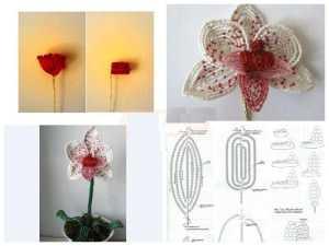 Орхидея из бисера в обучающих мастер-классах (фото)